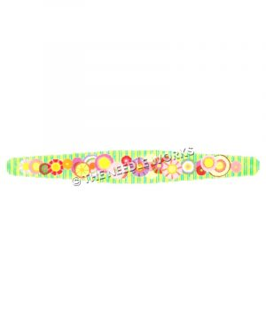 green and blue striped belt with pink, purple, and yellow circles and flowers