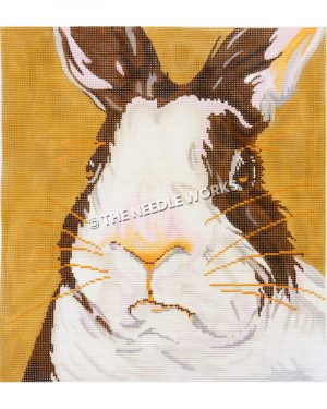 closeup face of brown and white bunny on dark yellow background