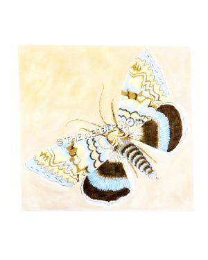 blue, yellow, and brown moth on yellow background