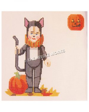 child in black cat costume with orange and green collar and jack-o-lantern and pumpkin in background