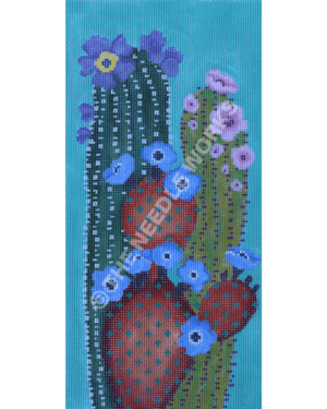three cactus with flowers blooming on blue background