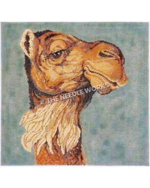 camel head in profile on blueish gray background