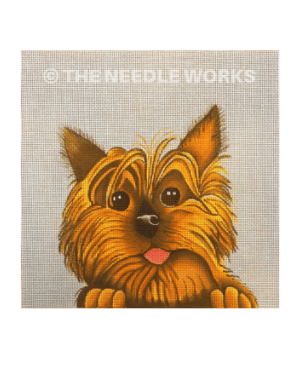 face of yorkie pup