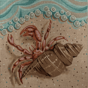 red crab in shell crawling on sand towards ocean